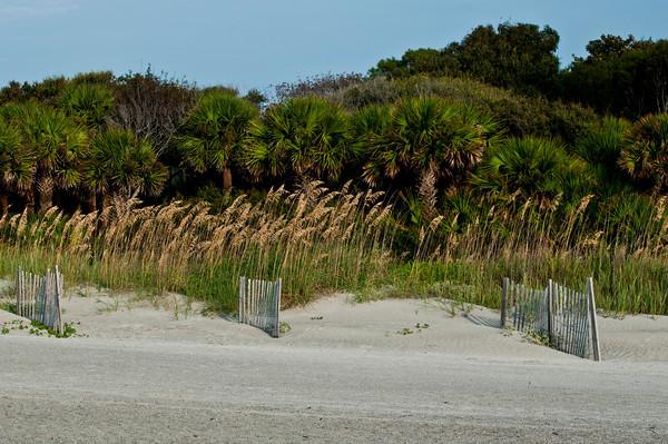 Hilton Head Sand Dunes