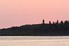 Butler Island trees just before sunrise.