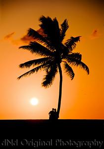 064 Bahamas 2008 Last Evening Sunset - Sunset & Tree