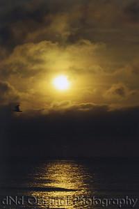 Sunrise Virginia 01 (35mm)