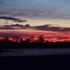 3-24-18 sun-nature10