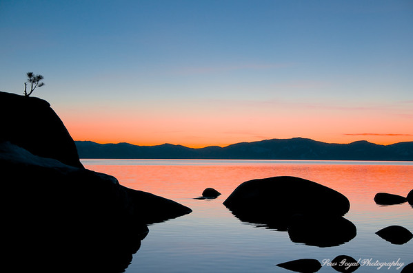 Bonsai Rock - Lake Tahoe