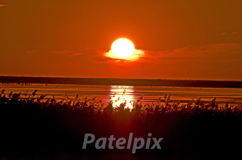 """The """"Crystal Ball"""" for our past, present and future --- Our very own star!!!<br /> <br /> Sunrise at Brigantine, Forsythe NWR, New Jersey, 2008"""