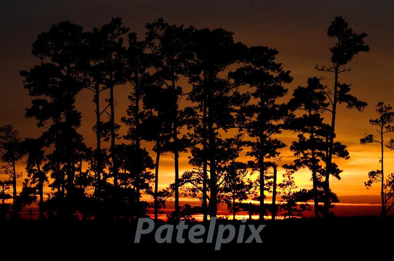 """Kahin door jab din dhal jaye  ---  ""<br /> Sunset at Blackwater NWR, Maryland, 2009"