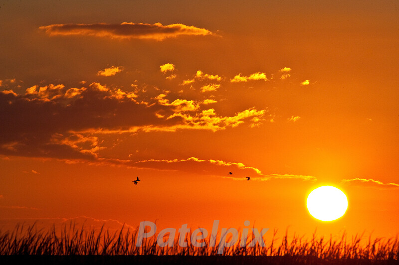If you wake up at 3.00 am, and drive a little, life rewards you with beautiful moments.<br /> Of course, if you wake up at 8.00 am, and don't drive at all, life rewards you with more rest.  Take your pick!<br /> Sunrise at Brigantine (Forsythe NWR), New Jersey, 2010
