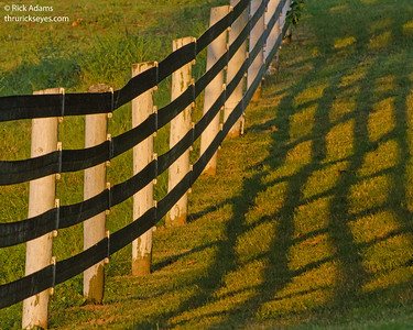 Fences at Ellington