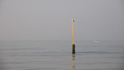 Noordzee-record poging paalzitten ?