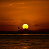 Sunset Bulwer wrecks, Glass House Mountains in background, Moreton Island 17/08/2013