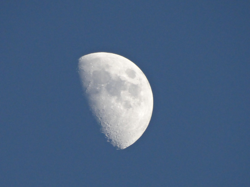 I was very pleased with this shot of the moon. The camera was hand held and on full 30x zoom.