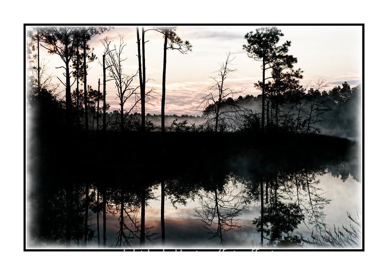A sunrise over a swamp near Pensacola, Florida