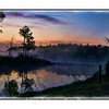 Sunrise over a swamp near Pensacola, Florida.