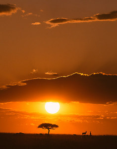 kenya sunset vertical printed 11x14