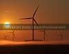 11X14 DSC_3569 Wind