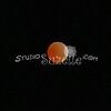 2010, 12-21 Lunar Eclipse (111)