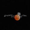 2010, 12-21 Lunar Eclipse (110)