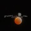 2010, 12-21 Lunar Eclipse (120)