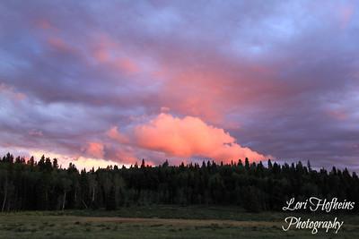 Near Hopewell Lake, NM