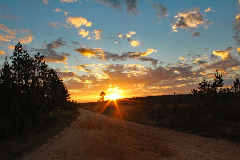 Sun Rays on Red Dirt Road