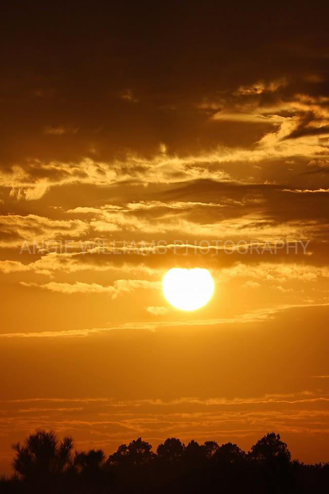 Big White Sun