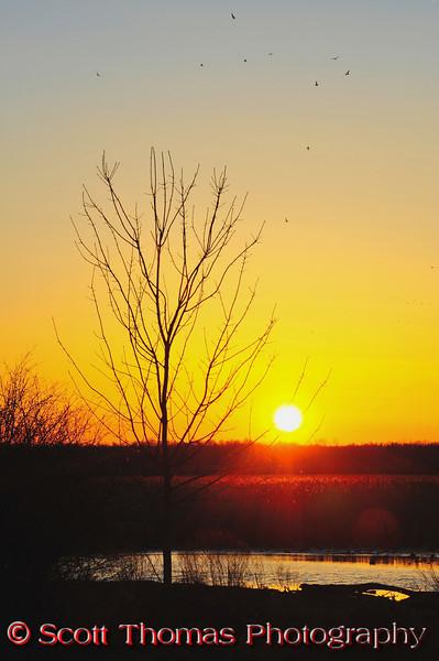 Sunset over the Montezuma National Wildlife Refuge near Seneca Falls, New York.