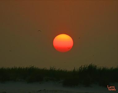 Sunset Dauphin Island 2007