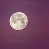 Morning moon 2-1-18_V9A4314