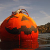 The Great Pumpkin Rising from the Cove