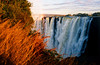 Winter Grass at Victoria Falls: