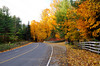 FALL COLOURS 6