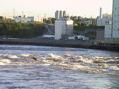 REVERSING FALLS AT LOW TIDE AND IRVING PULP & PAPER MILL