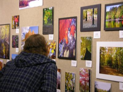 TREES Inc PHOTO CONTEST 2008