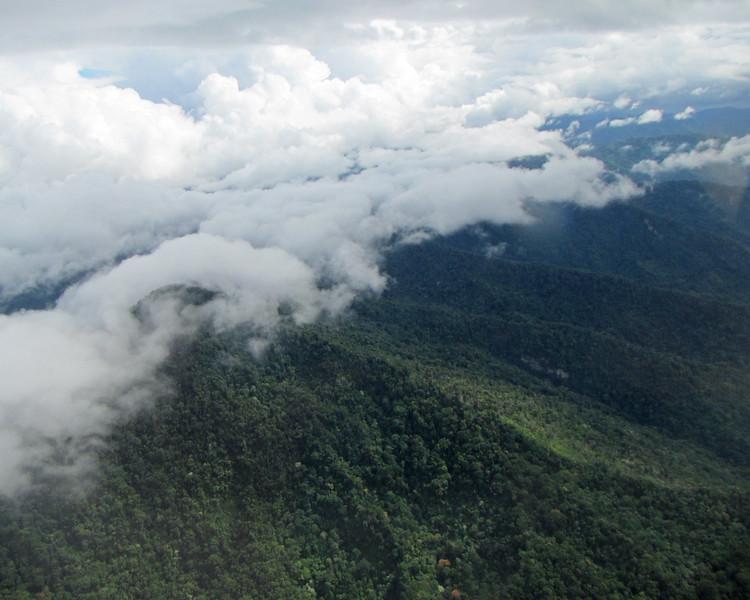 2017_ Trinidad eastern range_IMG_1902