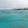 2017_ snorkeling Petit Tabac_ Tobago Cays_ Grenadines_IMG_1668