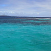2017_ reef at Tobago Cays_ Grenadines_IMG_1682