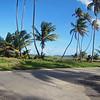 2017_Manzanilla_ Atlantic coast_ Trinidad_IMG_1253