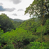 2017_ Asa Wright_ Arima Valley view_IMG_1231