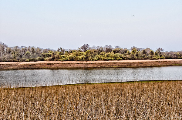 Telia Lake, Tadoba, April 2012