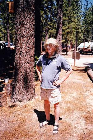 1999 - Tahoe Wilderness Institute '99