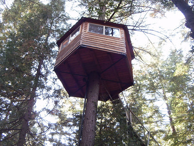 Takilma Tree Houses
