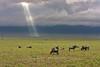 Storm clouds, Ngorongoro Crater, Tanzania, Africa