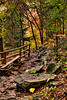 Fall Creek trail 6am HDR