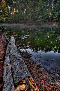Hidden Lake at Bowie Nature Park HDR