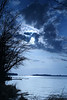 Reelfoot Lake, West TN