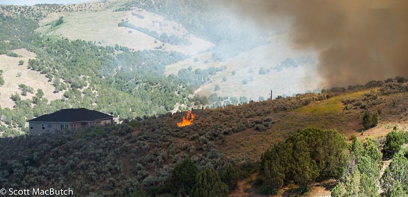 Charlotte Spot Fire