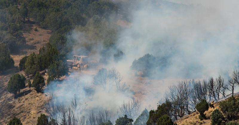 Blacrock Wildfire
