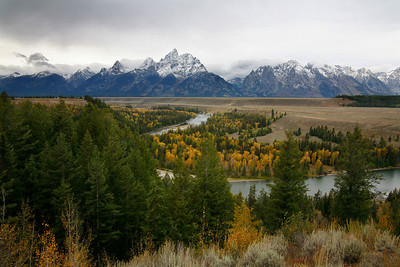 tetons and snake river with aspens