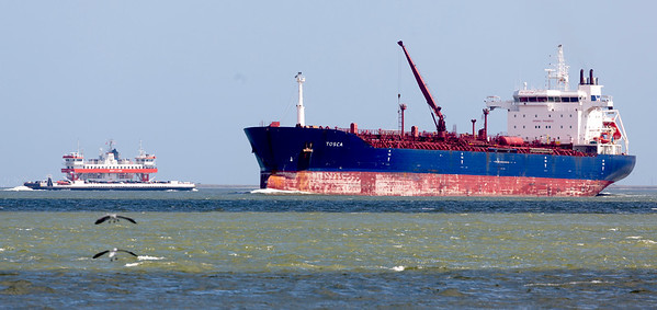 Bolivar Ferry (left), two gulls, and tanker Tosca -- 27,000 gross tons