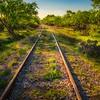 Tracks in Kingsland