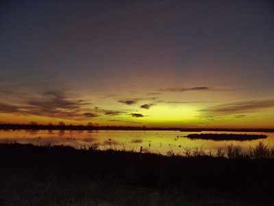 Attwaters NWR