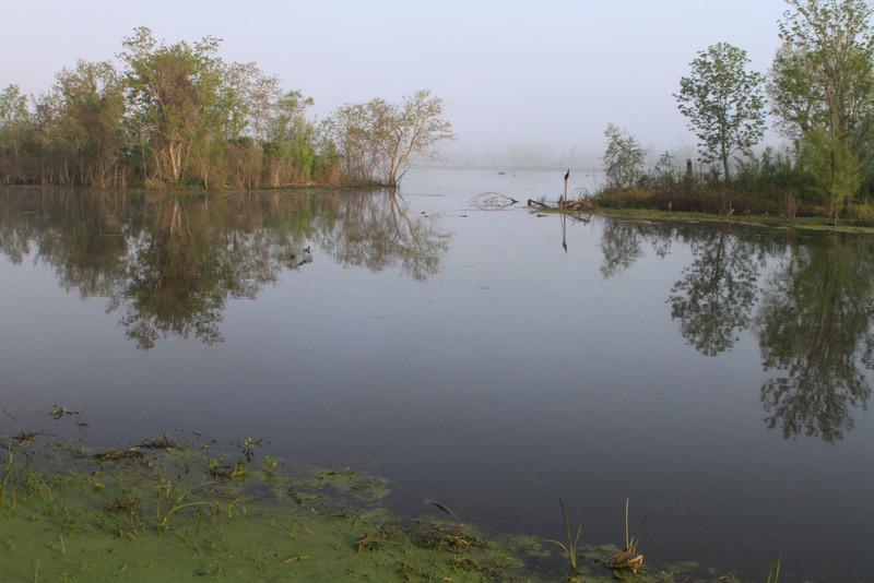 2010 04 03 -  BBSP  Elm Lake 2